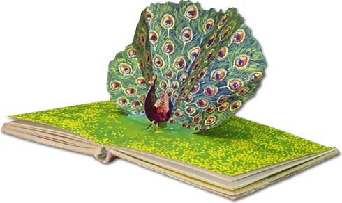 Book Of Ra Popup